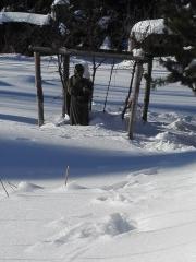 naše svatá po kolena ve sněhu
