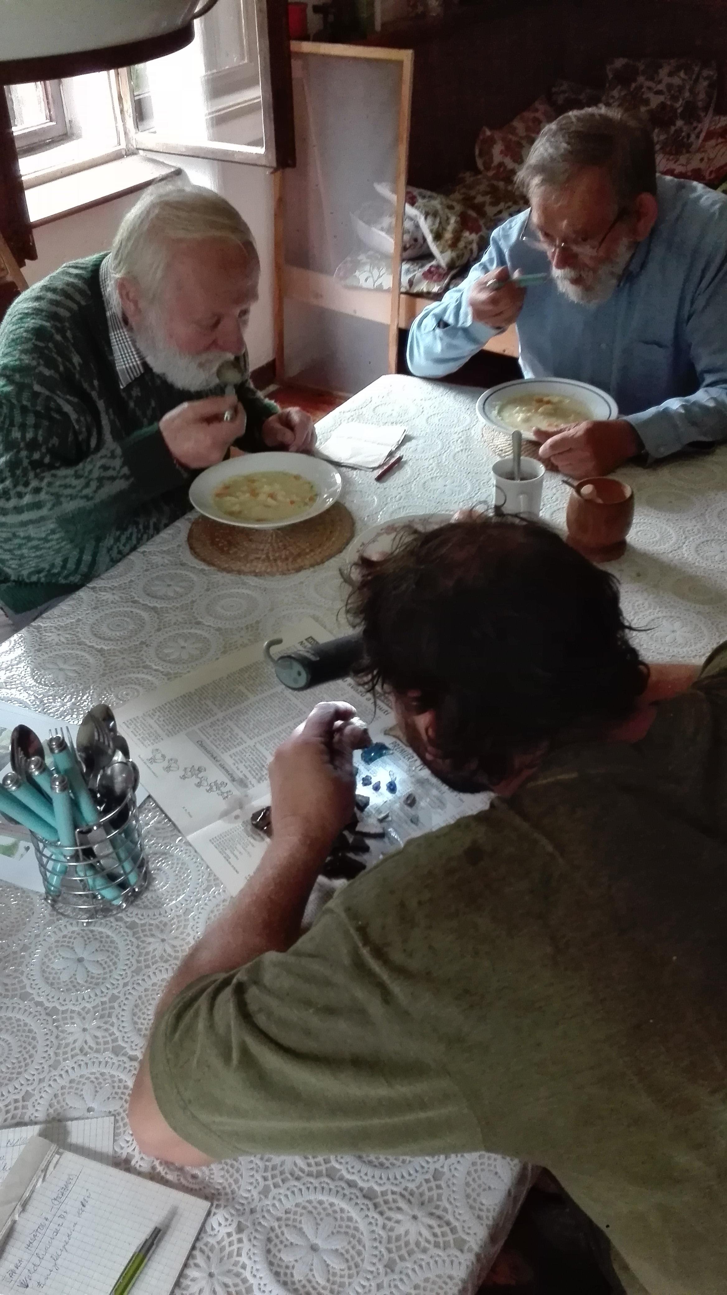 květáková polévka a odborníci